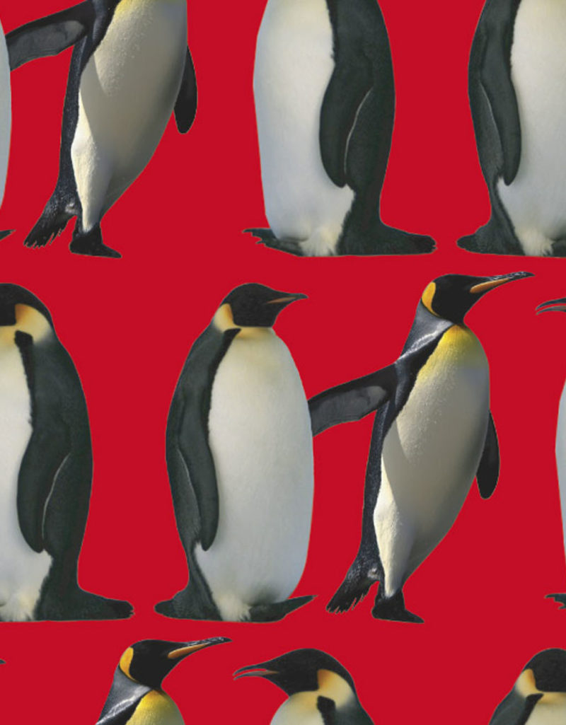 JOE.20-11 pinguino ROSSOnew collection Joelury summer 2020